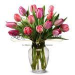 Dulzura en Tulipanes
